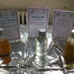تجربة انتاج الوقود الحيوي من الذرة السكرية