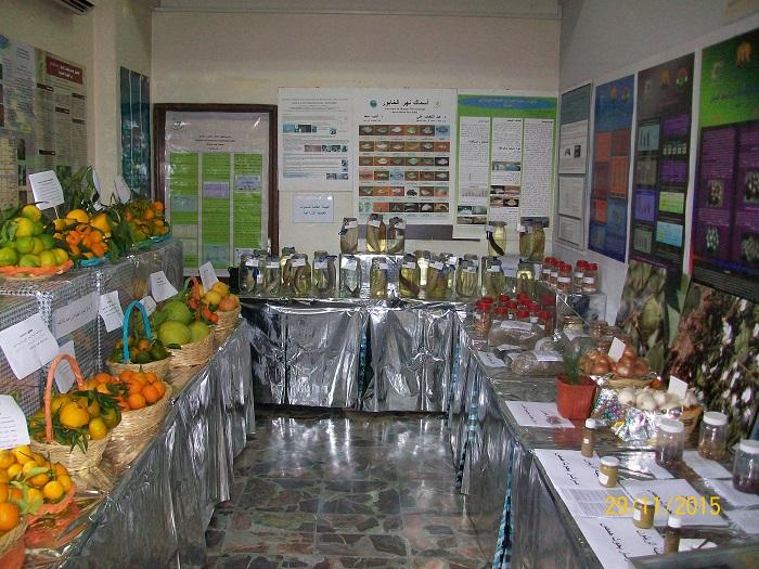 Exhibition29112015-12