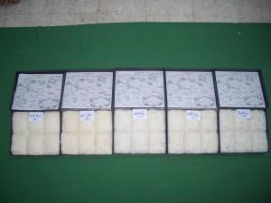 cotton sort