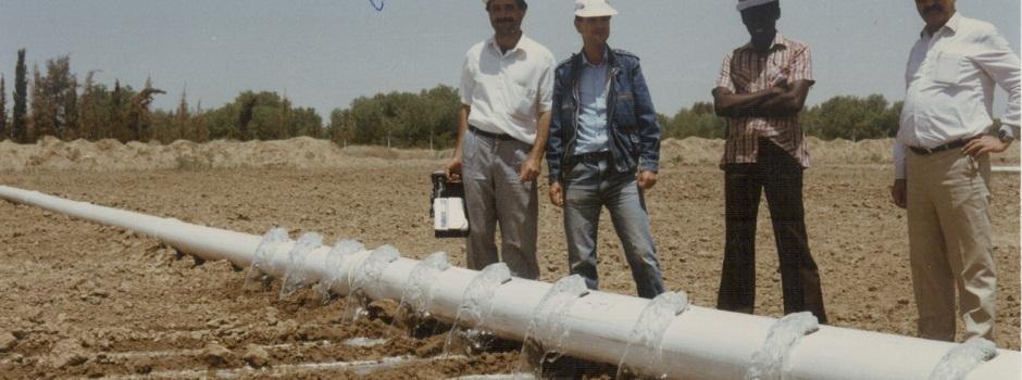 Irrigation experiments
